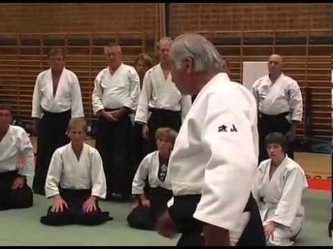 ▶ Hiroshi Isoyama 8DAN Hideo Yonemochi 8 DAN The Semianr In Gothenburg August 1 Part - YouTube