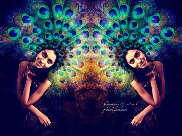 The Peacock Princess by poonaam jadhwani