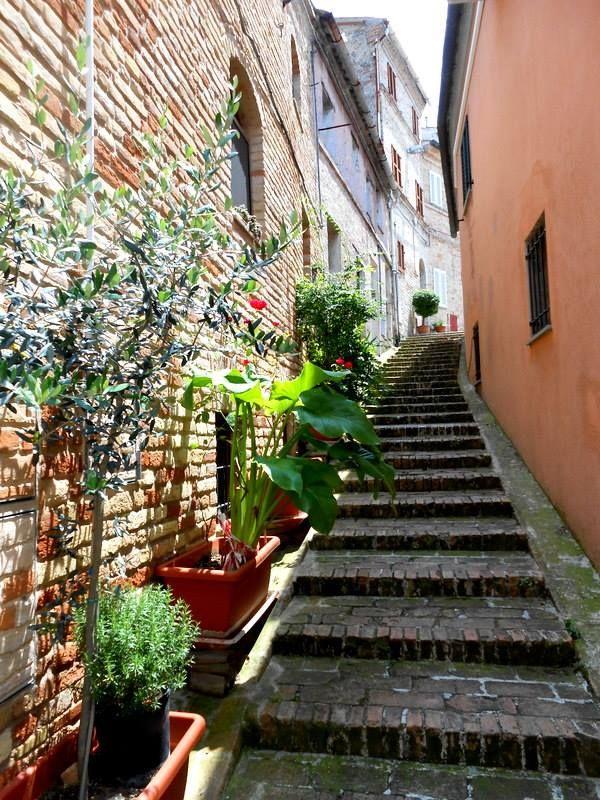 La bellezza dei vicoli recanatesi... summer is here #Recanati #vicoli #outdoor #summer #marche