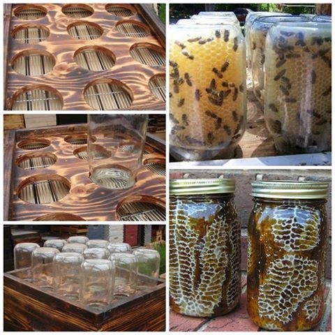 HOW TO MAKE A MASON JAR BEEHIVE  honey bees hive  https://www.facebook.com/groups/HandyMoms/