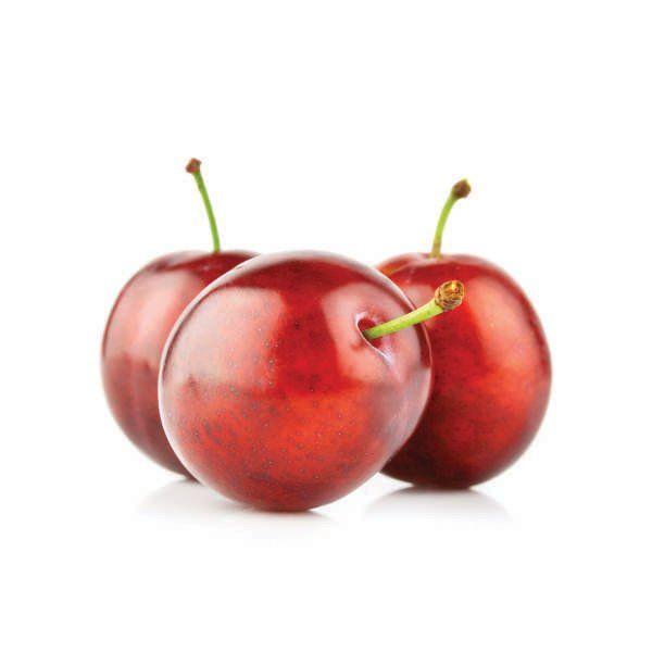 Śliwa - Prunus domestica 'Królowa Wiktoria'