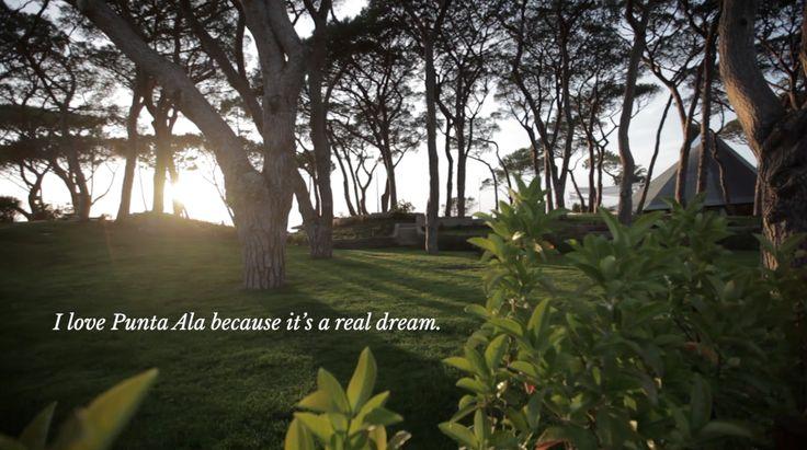 I love Punta Ala because it's a real dreams... If you love Punta Ala too, tell us why: #WhyIlovePuntaAla