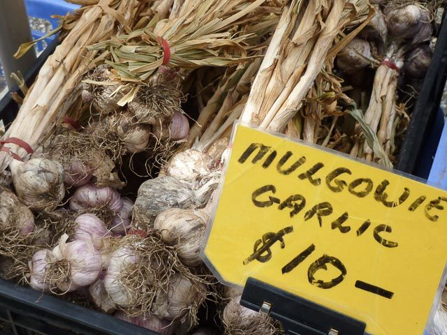 Fresh Mulgowie garlic... The Powerhouse Farmers Market - Brisbane, Australia * Read the review on TIFFIN - bite sized food adventures -