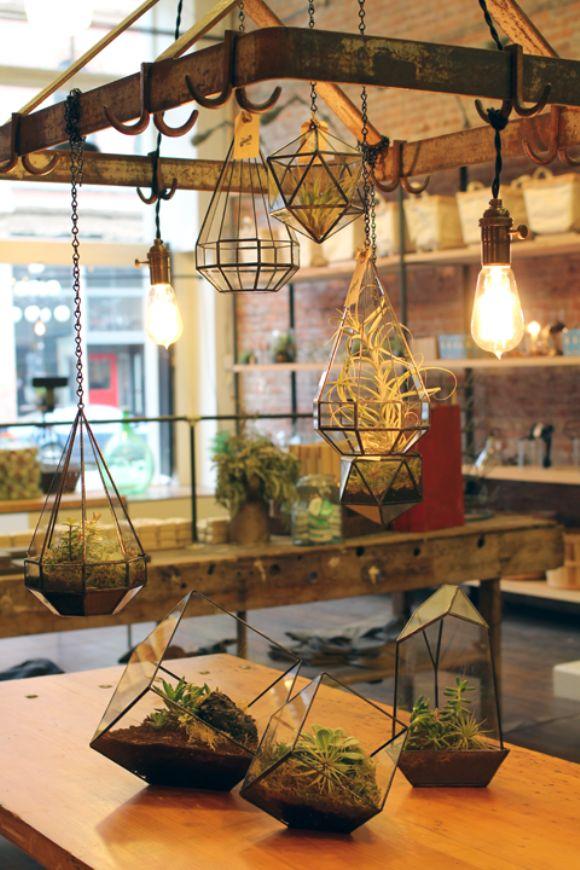 Geometric Hanging Terrariums