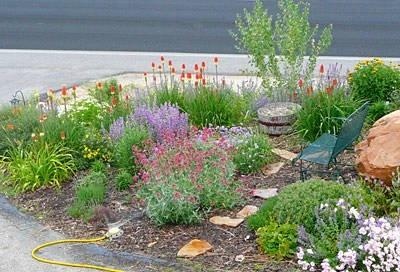 Nice little rock garden: Gardens Ideas, Yard Stuff, Rocks Gardens, Little Rocks, Desert Rocks, Desert Gardens, Gardens Gates, Dreams Yard