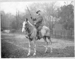 Boer War, 1901. Spanish-American War Mule 1898
