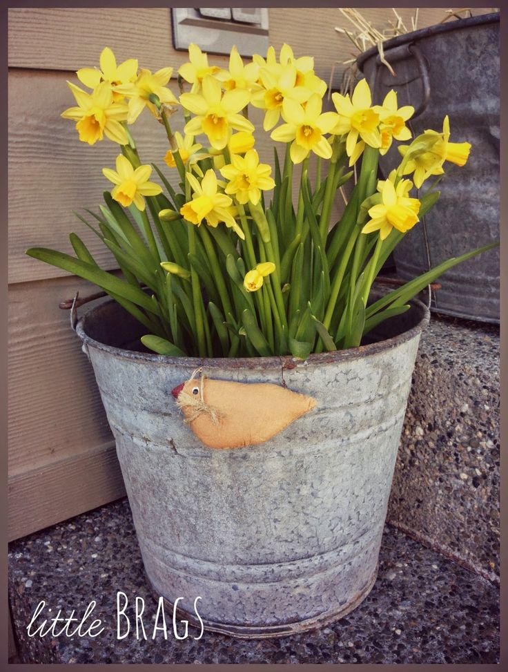Hello and Happy Weekend Everyone. It was a gorgeous Spring day in Olympia today! I really enjoyed spending some time outside, decorating th...