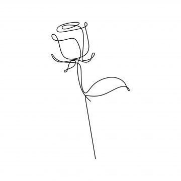 Continuous line drawing of roses