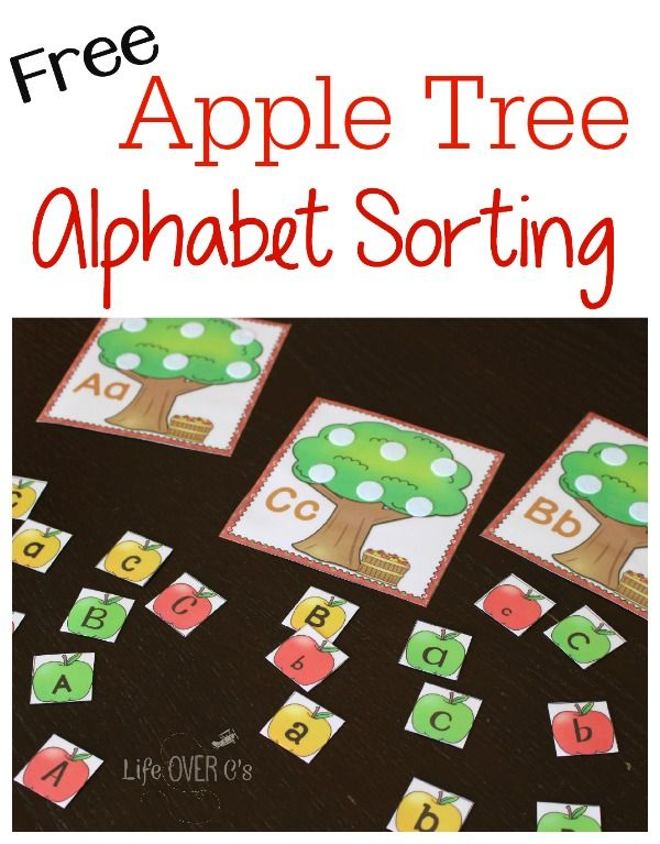 Alphabet Sorting with Apple Trees - This is not mundane repetition with worksheets or flash cards. This absolutely fun! This is one of the reasons that I invest in color printing for almost everything that I make. Because the colors take an activity and make it lively.  I also use multi-sensory approaches, like we did with these alphabet sorting apple trees. I took the apple sensory box (sneak peak!!) and placed the letter pieces in it along with the trees.