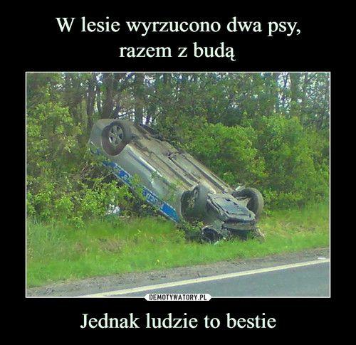 http://m.demotywatory.pl/poczekalnia/page/7