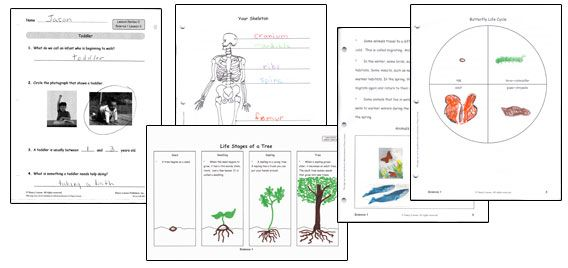 8 best Science 2 for School images on Pinterest