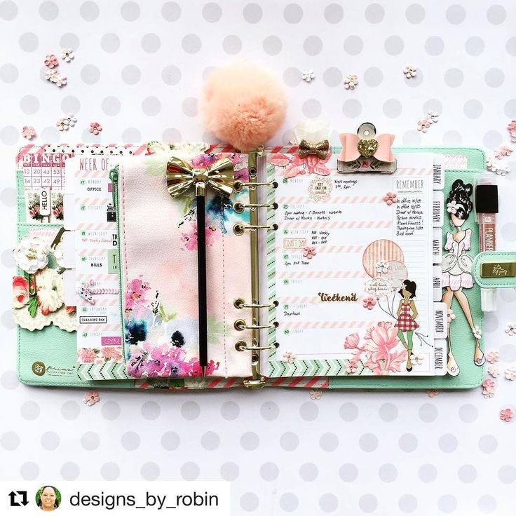 #Repost @designs_by_robin ・・・ A view of my week.  It's a slow one again thank goodness. I used @julie_nutting stickers which are my new favorites. #mpp #myprimaplanner #julienutting #planner #planneraddict