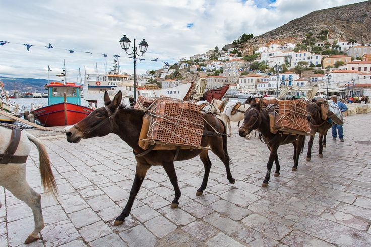 #travelblogger Alisa R Kennedy shares her 24 hours spent on #Hydra http://www.passionforgreece.com/index.php?option=com_content&view=article&id=131&lang=en#experience #passionforgreece #travel #greece