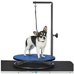 Master Equipment Small Pet Grooming Table, Blue