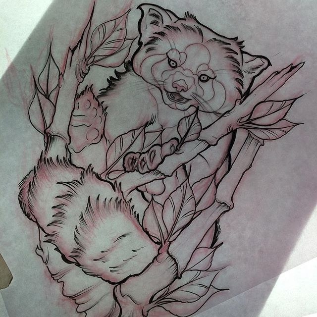 Best 25 Red panda tattoo ideas on Pinterest  Pandas roux
