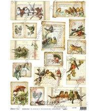 Decomania Papier ryżowy 35x50 cm - zwierzęta - CreativeHobby - Decoupage