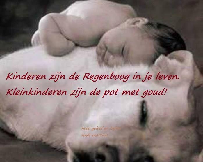 kinderen zijn de regenboog in je leven kleinkinderen zijn een pot met goud ...