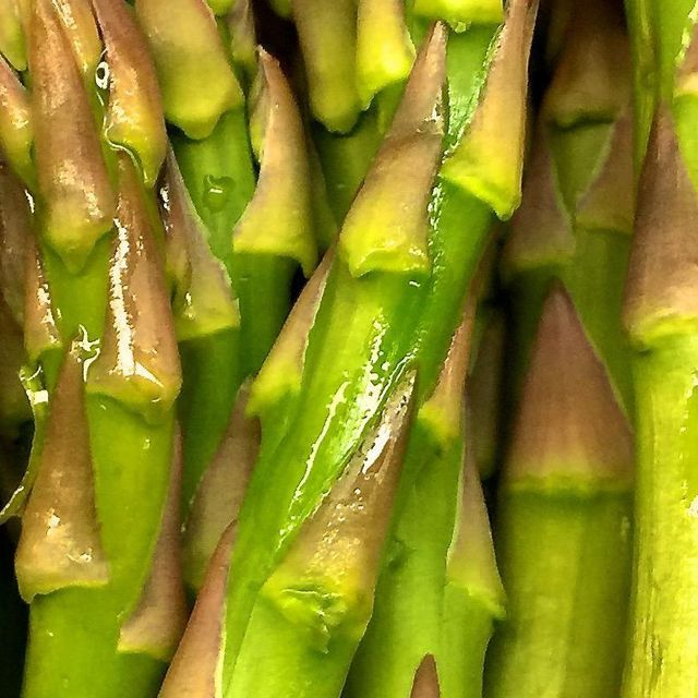Here is how and when to plant asparagus.