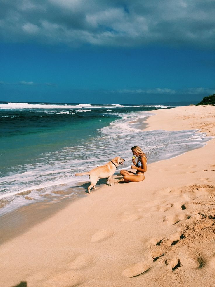 at the beach with your dog... sounds like a perfect summer to me