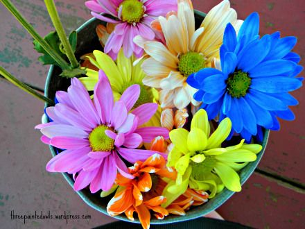 Grocery Store Wedding Flowers Pin By Three Painted Owls On Wedding Wednesday Pinterest