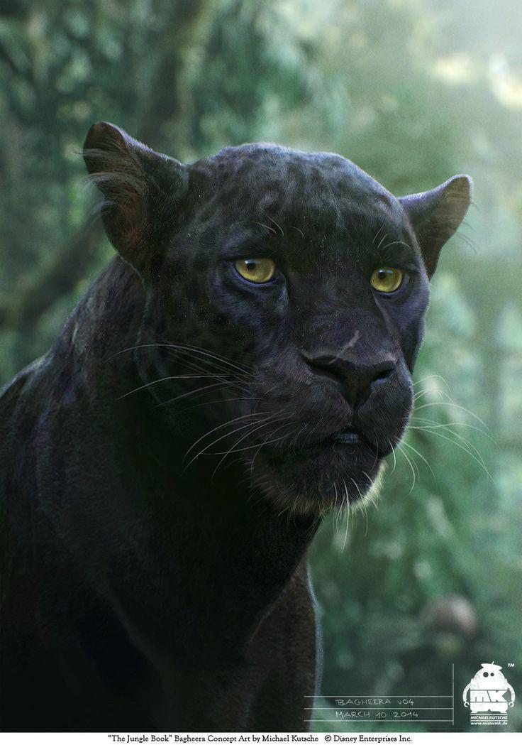 The Jungle Book: Bagheera character design, Michael Kutsche on ArtStation at https://www.artstation.com/artwork/4l8yY