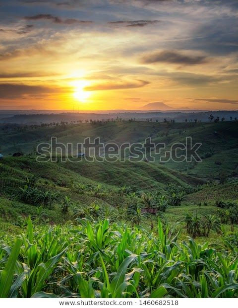 23 Pemandangan Di Pagi Hari Pemandangan Alam Indonesia Di Waktu Pagi Stock Photo Edit Download Keindahan Pemandangan Laut Di Pa Di 2020 Pemandangan Langit Pantai