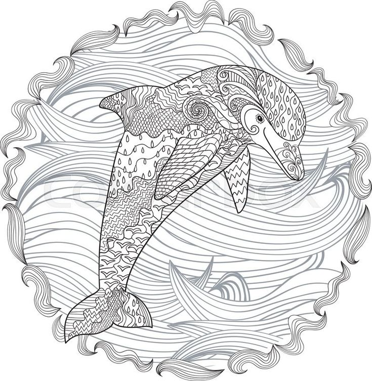 17 Beste Afbeeldingen Over Coloring Dolphin Whale Shark Op Pinterest