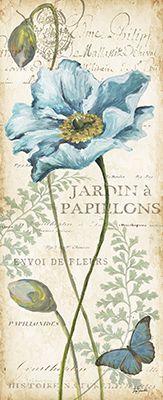 Poppies.Histoire.Naturelle.Panel.02.of.02
