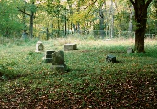 Bachelor's Grove Cemetery, Chicago, Illinois  - reportedly one of the most haunted places in America... therefore I want to go!