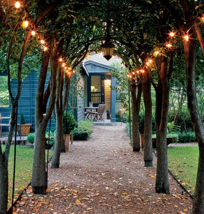 Ten flowering pear trees were coaxed over a metal arch to create this living arbor... Outdoor string lights add a romantic ambience...