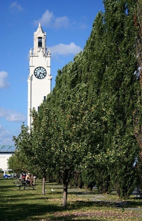 Molson Clock Tower, Montreal, Canada