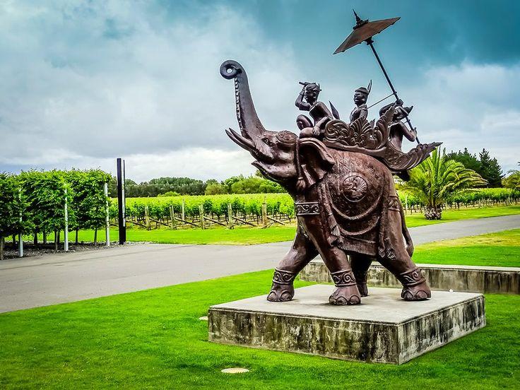 Dinner, Elephant Hill Winery, Hawkes Bay, NZ   by Brett, The Wine Maestro