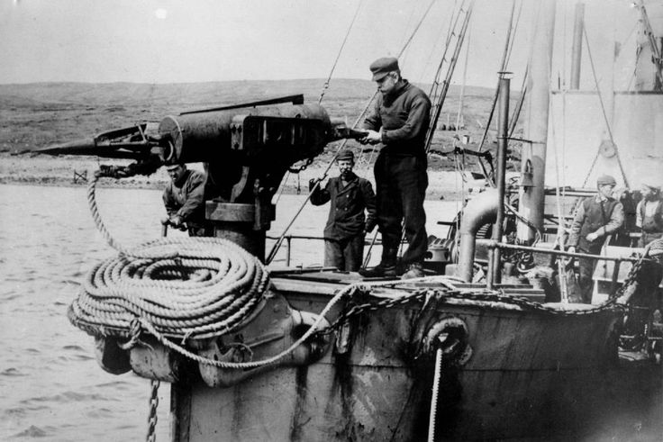 Endret hvalfangsten med et smell - Aftenposten