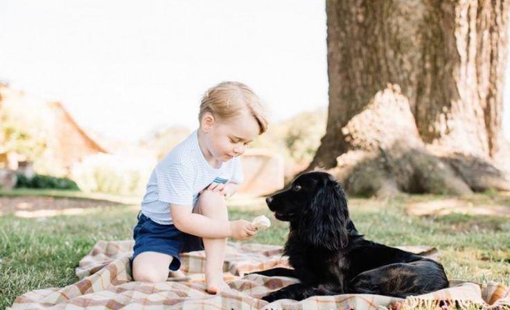 Prins William onthult: hier kan je prins George blij mee maken