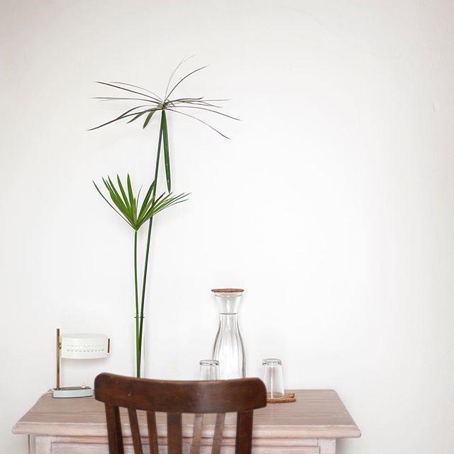 Small vintage lamp. Companhia das Culturas | Algarve |