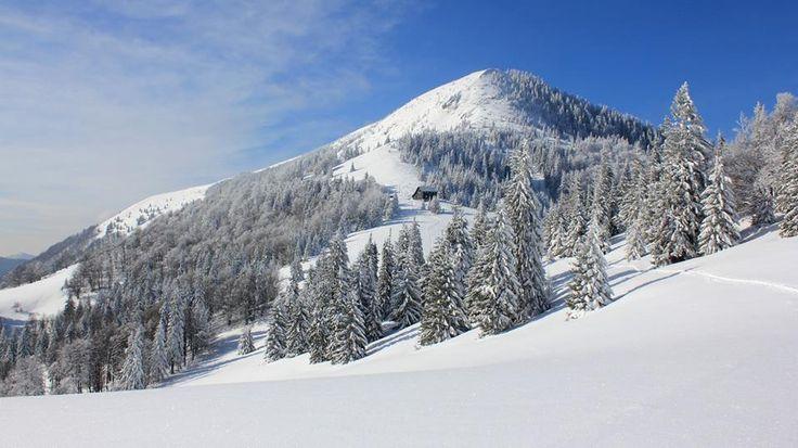 Borišov (1 510 m), Veľká Fatra, Slovakia