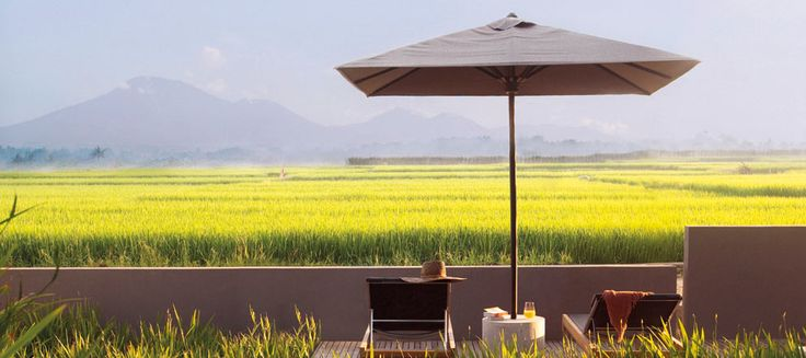 Bali's stunning landscape is as much a part of the villa experience as the beautiful contemporary design and blissful comforts, with sweeping views across an emerald expanse of rice fields stretching towards mystical Mount Batukaru on the distant horizon. #Alila #villa #Soori #mountain #rice #field #retreat #bali #view
