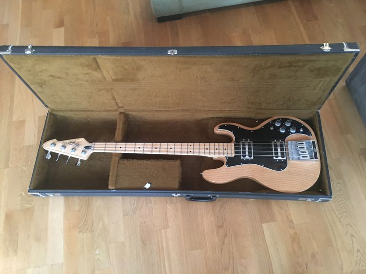 Case by Case No 1 Peavey T-40 1979 vintage bass