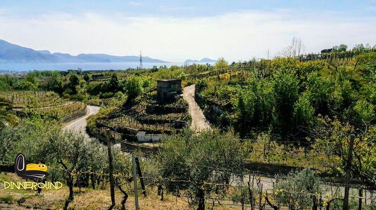 Windy excursion.... 😀 Escursione ventosa... #dinneround #napoli #escursioni #vino #vineyard #viaje #comerbien #italy #italien #vento #cibo #excursion #neapel #vesuvio #foodtour #landscape #panorami