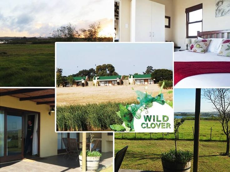 Your stay at our cottages will be never forgotten! We offer peaceful cottages that border a wildlife sanctuary with the views of Table Mountain. Link: http://ow.ly/YRWEk