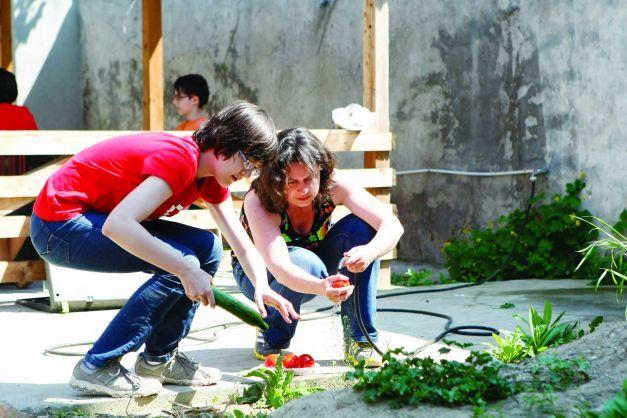 """Educaţia de acasă versus educaţia de la şcoală. De ce optează părinţii pentru """"homeschooling""""   adevarul.ro"""
