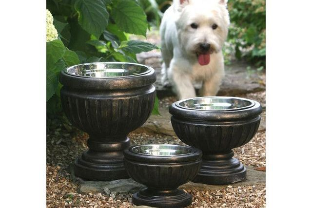 17 Best Ideas About Dog Water Bowls On Pinterest Dog