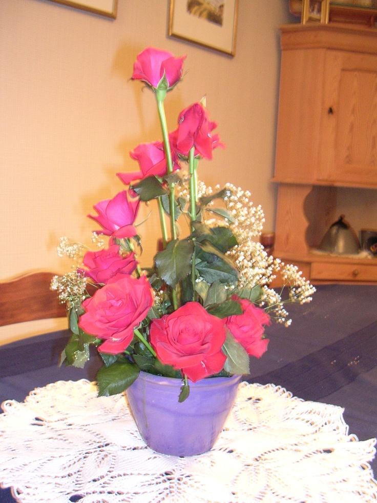 jeg elsker å dandere blomster. Roser og brudeslør