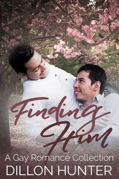 Claim a free copy of Finding Him: A Gay Romance Collection
