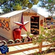 Star Rock Shop Cactus Joe's Blue Diamond Nursery Las Vegas