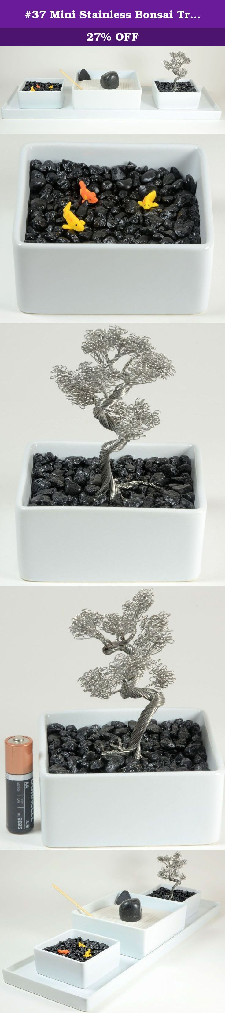 1000 Ideas About Bonsai Tree Price On Pinterest Zelkova Bonsai