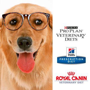 Consulta en nuestra tienda online para mascotas los alimentos medicados disponibles para perros. Best for Pets