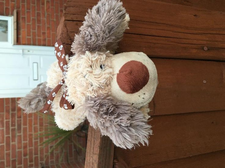 Found on 13 Apr. 2016 @ Downland Avenue, Peacehaven. Found on the pavement at the junction of Roundhay and Downland Avenues in Peacehaven. Now on the fence of number 19. Visit: https://whiteboomerang.com/lostteddy/msg/qxvs49 (Posted by Kerry on 13 Apr. 2016)