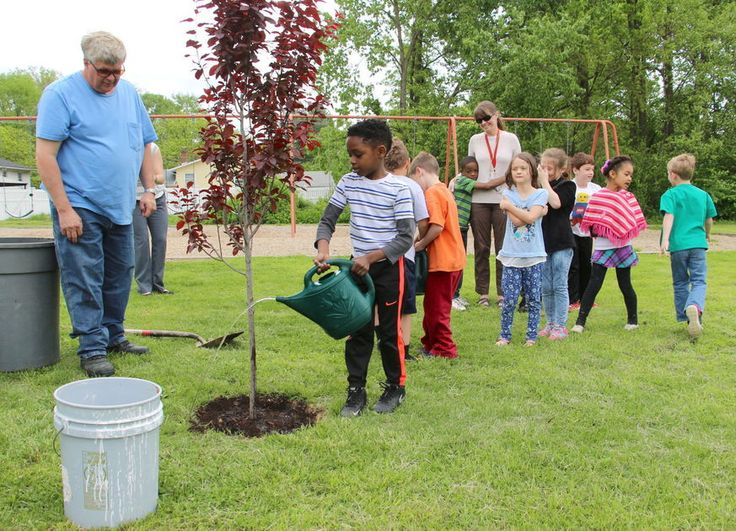 Tree planting at west park place elementary celebrates arbor day the playground at west park place elementary school got a splash of color wednesday as