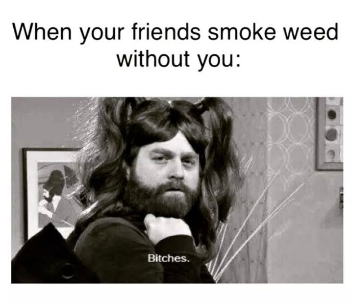 What the hell happened to my friend when he smoked a joint?
